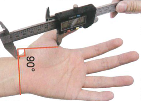 How to measure palm 2 regal prosthesis